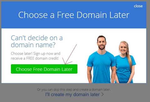 choose a free domain